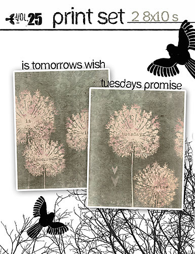 Print set tuesdays promise