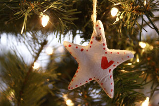 Holiday ornaments 8