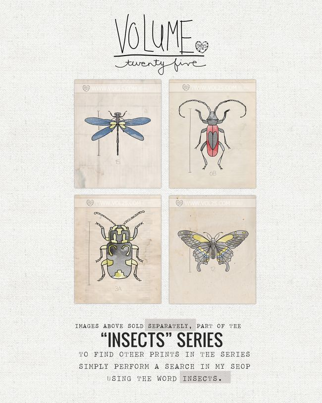 VOL25 INSECTS SERIES