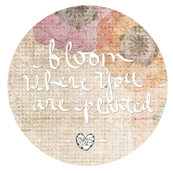 VOL25 QUOTE BLOOM WHERE YOU ARE PLANTED