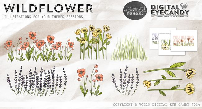 WILDFLOWER COLLECTION PAGE