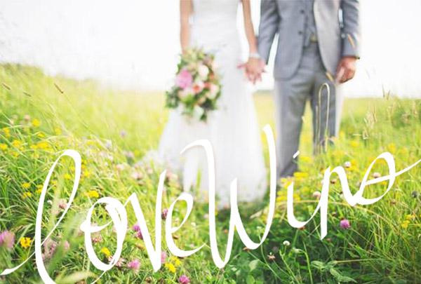 LOVE WINS BY VOL25 4