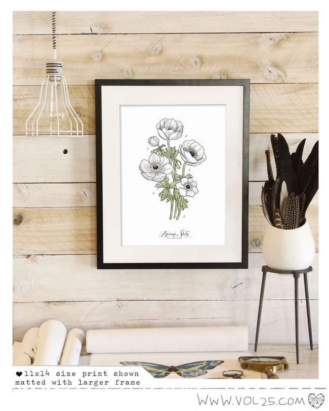SCIENCE POSTER PRINT ANEMONE