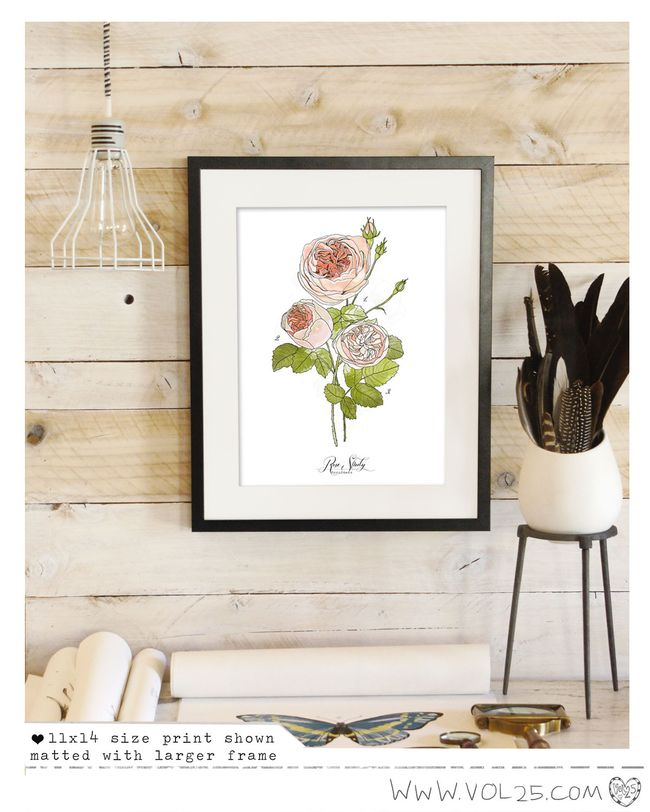 SCIENCE POSTER PRINT LISTING ROSE
