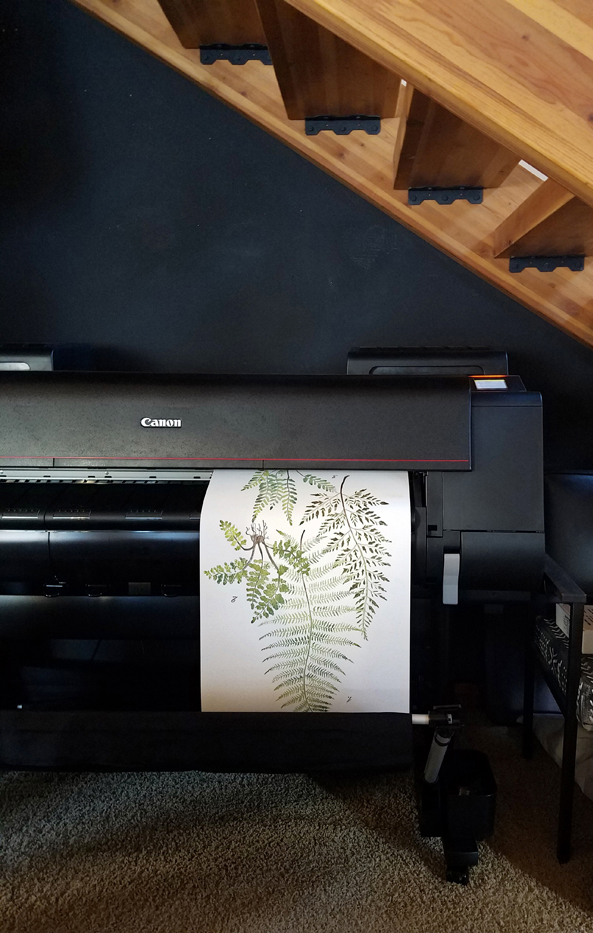 PRINTING COLOSSAL FERN